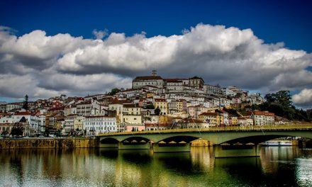 """""""A região de Coimbra é e sempre será inovadora"""""""