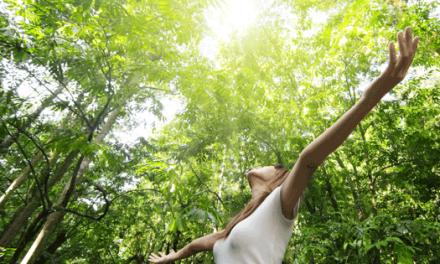 Biodiversidade recebe 6 milhões de taxa verde