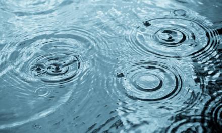 26 Municípios já têm estratégia de adaptação às alterações climáticas