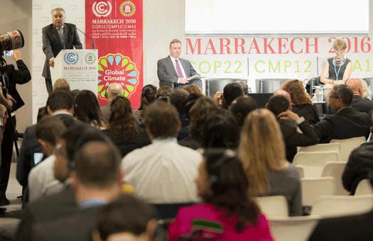 COP22: Acção local é cada vez mais importante