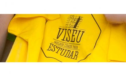 30 bolsas para Viseu apoiar a educação e formação artística no concelho