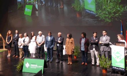 Almada vai ter 1 milhão/ano para investir em mobilidade sustentável