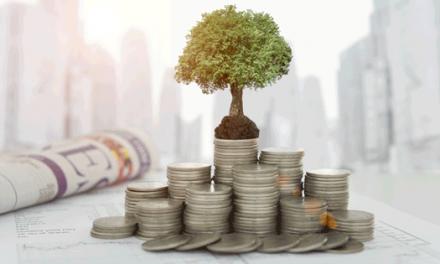 ONU e OCDE comprometidos com o problema do financiamento das cidades