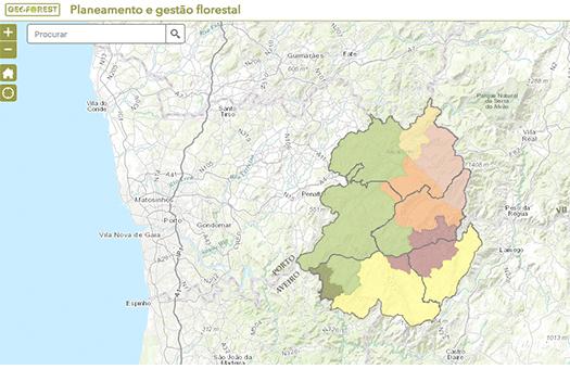 GeoForest, os SIG no combate aos incêndios florestais