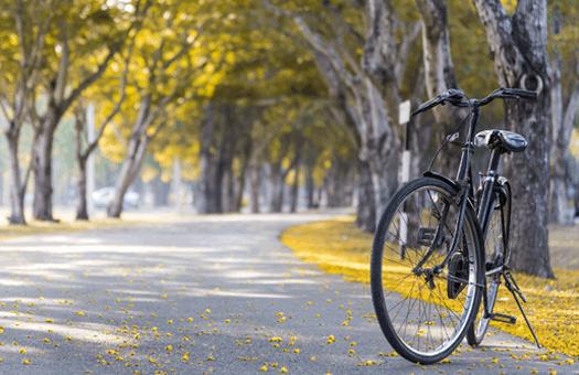 Compromisso pela Bicicleta – aceita o desafio?