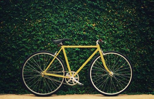 Papel mais relevante para a bicicleta nas políticas climáticas