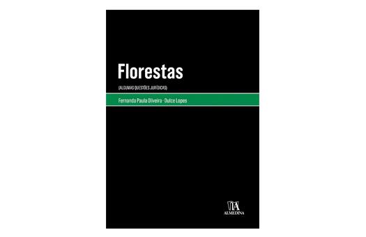 Florestas: obra junta ordenamento do território e planeamento florestal