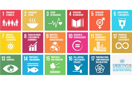 CEiiA apresenta na ONU aplicação que premeia quem reduz emissões de CO2