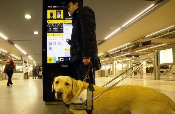 Ecrãs informativos da TOMI agora acessíveis a pessoas com deficiência