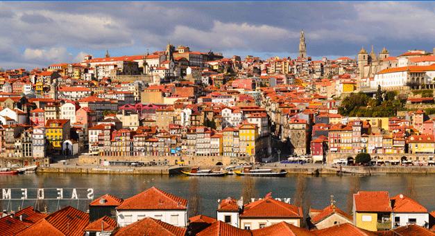 Porto: jardins e plantas nos telhados para combater o calor, diz estudo da Universidade de Aveiro