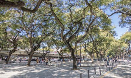 São Domingos de Benfica: da cidade à freguesia smart