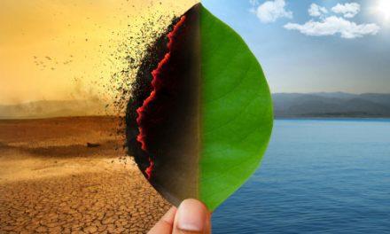 Cidades portuguesas exigem acção climática mais ambiciosa em carta aberta à UE