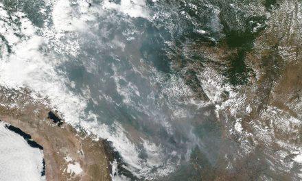 Amazónia é o símbolo da necessidade do fim da Era do Antropoceno