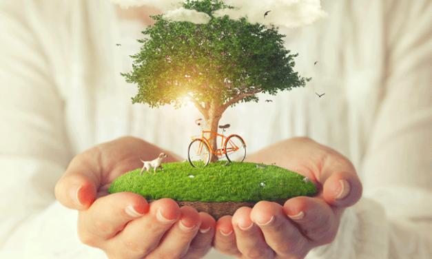 Qualidade do ar: envolver cidadãos na investigação aumenta compreensão dos riscos da poluição