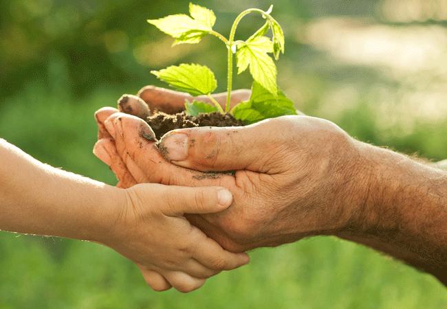 Pacto Ecológico Europeu com calendário rigoroso para reforçar ambição climática