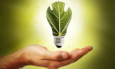 Beltrão Coelho: uma PME com um futuro verde