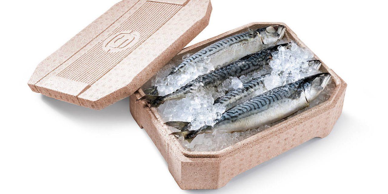 Ocean's Calling: projecto vencedor propõe embalagem de base orgânica para alimentos frescos