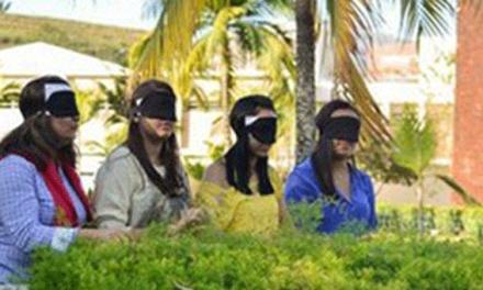 «Jardim Sensorial» promove a saúde mental e física dos gaienses