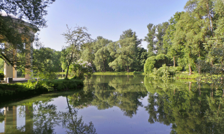 """Poluição: Mais espaços verdes e azuis nas cidades são """"parte essencial da solução"""", diz Agência Europeia do Ambiente"""