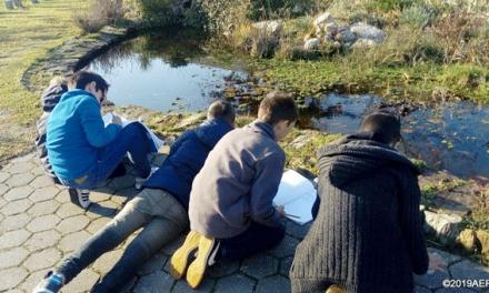 Grande Porto: Mais de 1500 alunos já experimentaram a natureza como sala de aula