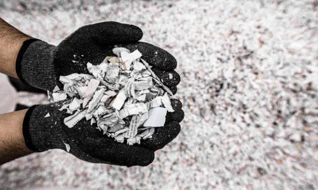 Práticas sustentáveis no seio das empresas: o exemplo da destruição documental da Papiro