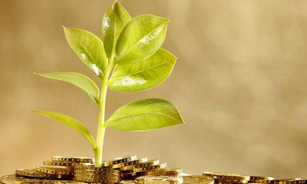 Programa LIFE tem mais 121 milhões para apoiar projectos integrados. Um deles é português