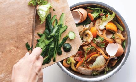 Biorresíduos: Um novo balde para a cozinha