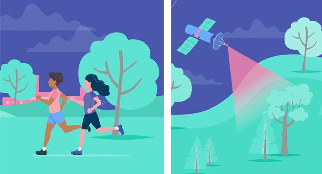 CASSINI Hackathon procura soluções para digitalizar espaços verdes nas cidades