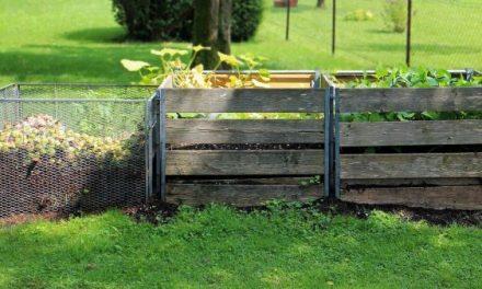 """Aviso """"Biobairros"""" tem 500 mil euros para apoiar municípios na reciclagem de biorresíduos"""