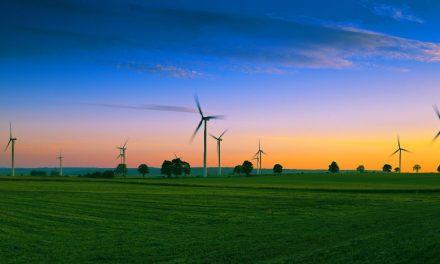 Galp parceira da Amazon Web Services no programa para startups Clean Energy Accelerator