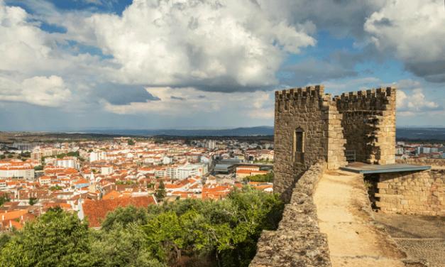 """Castelo Branco testa novo """"Serviço Municipal de Inovação"""" para apoiar empresas locais"""