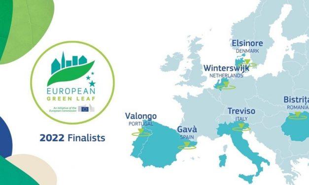 Valongo está na corrida para vencer o prémio European Green Leaf 2022